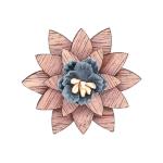 Marguerite gris